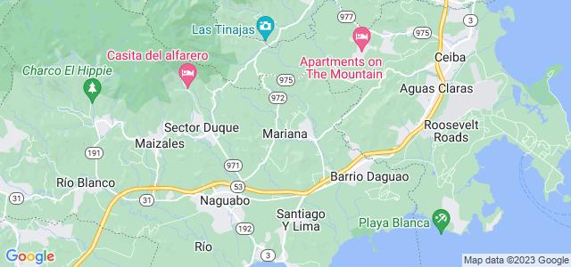 Puerto Prohibido Mariana Guarinoni Pdf